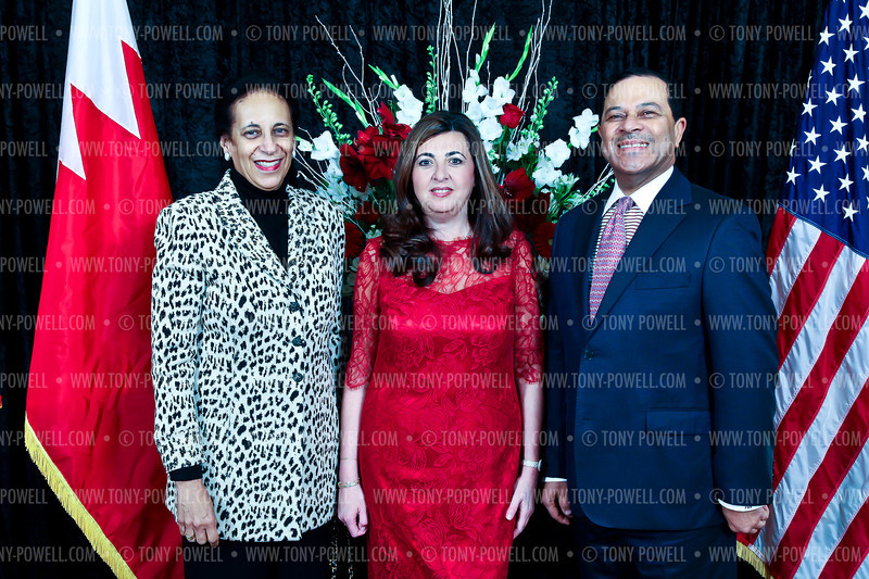 Photo by Tony Powell. 2012 Bahrain National Day. Ritz Carlton Hotel. December 12, 2012