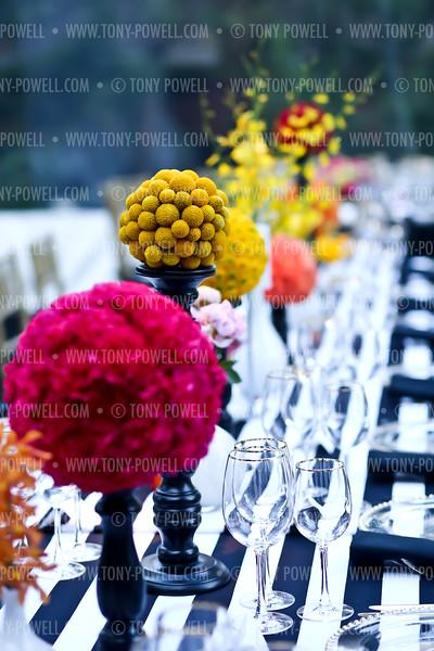2015 David & Katherine  Bradley WHCD Welcome Dinner